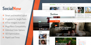 tema premium wordpress