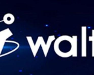 qué es Walton-WTC