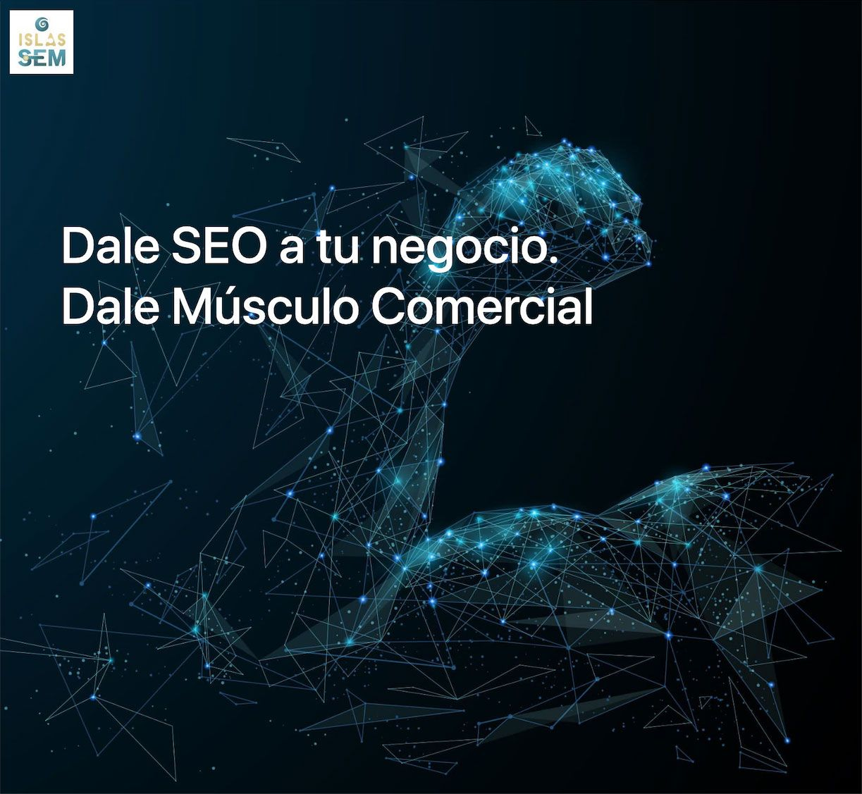 Posicionamiento Web en Las Palmas: Islas SEM