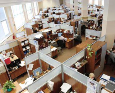 sectores con más empleo