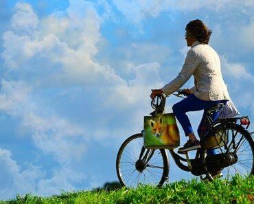 El aumento de la venta de bicicleta tras la pandemia